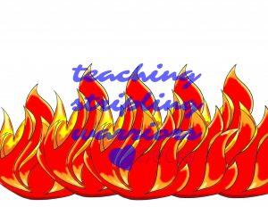fire lots wm