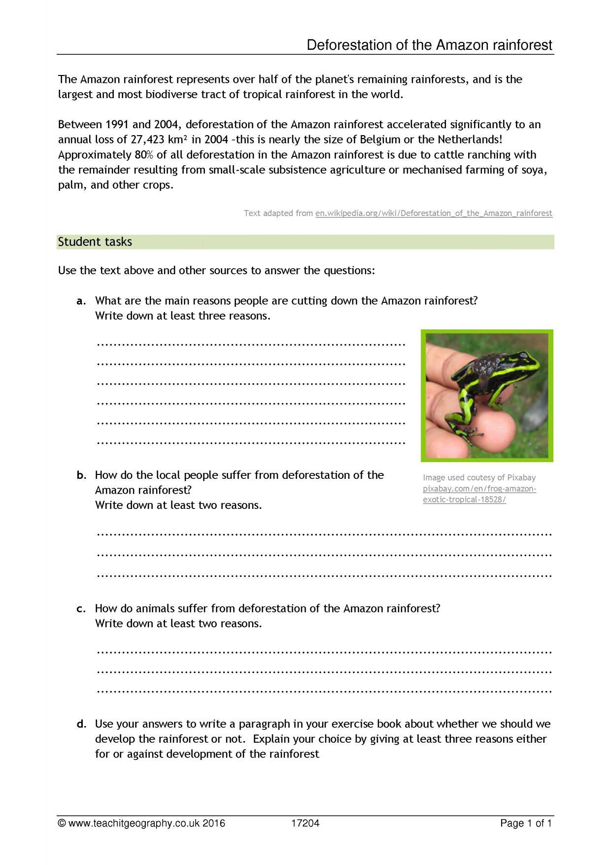 Worksheet Rainforest Worksheets Worksheet Fun Worksheet