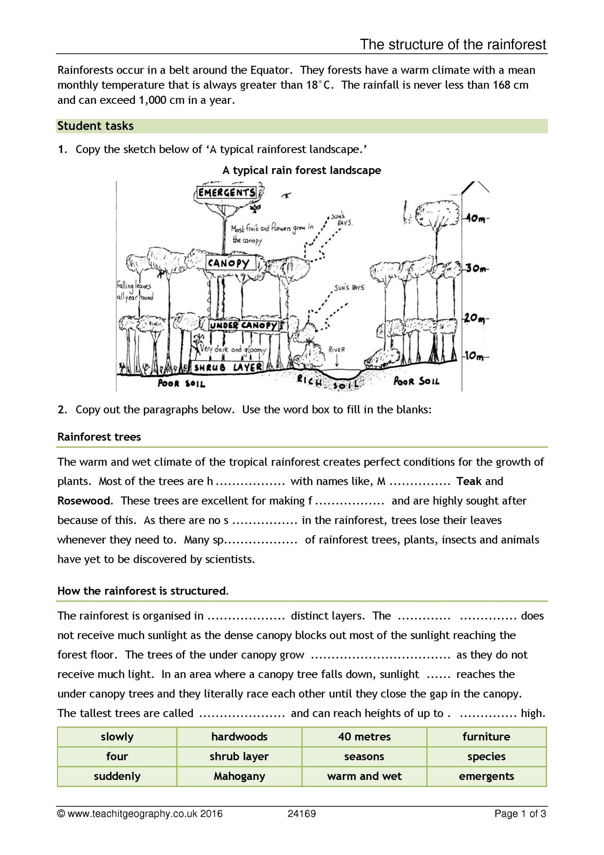 Tropical Climate Worksheet