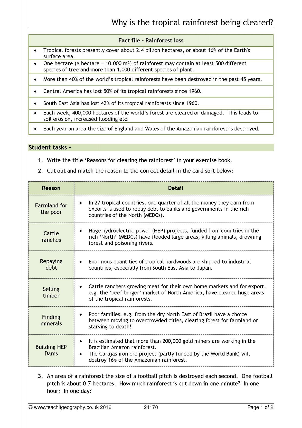 Worksheet Rainforest Layers Worksheet Worksheet Fun