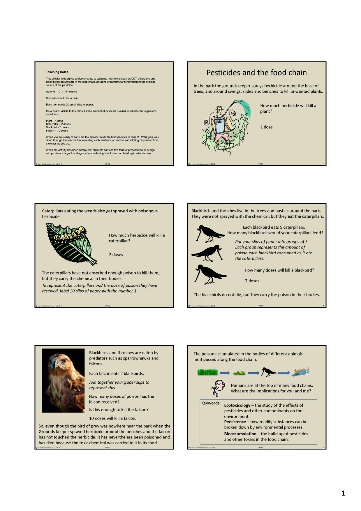 Ecology Ks3