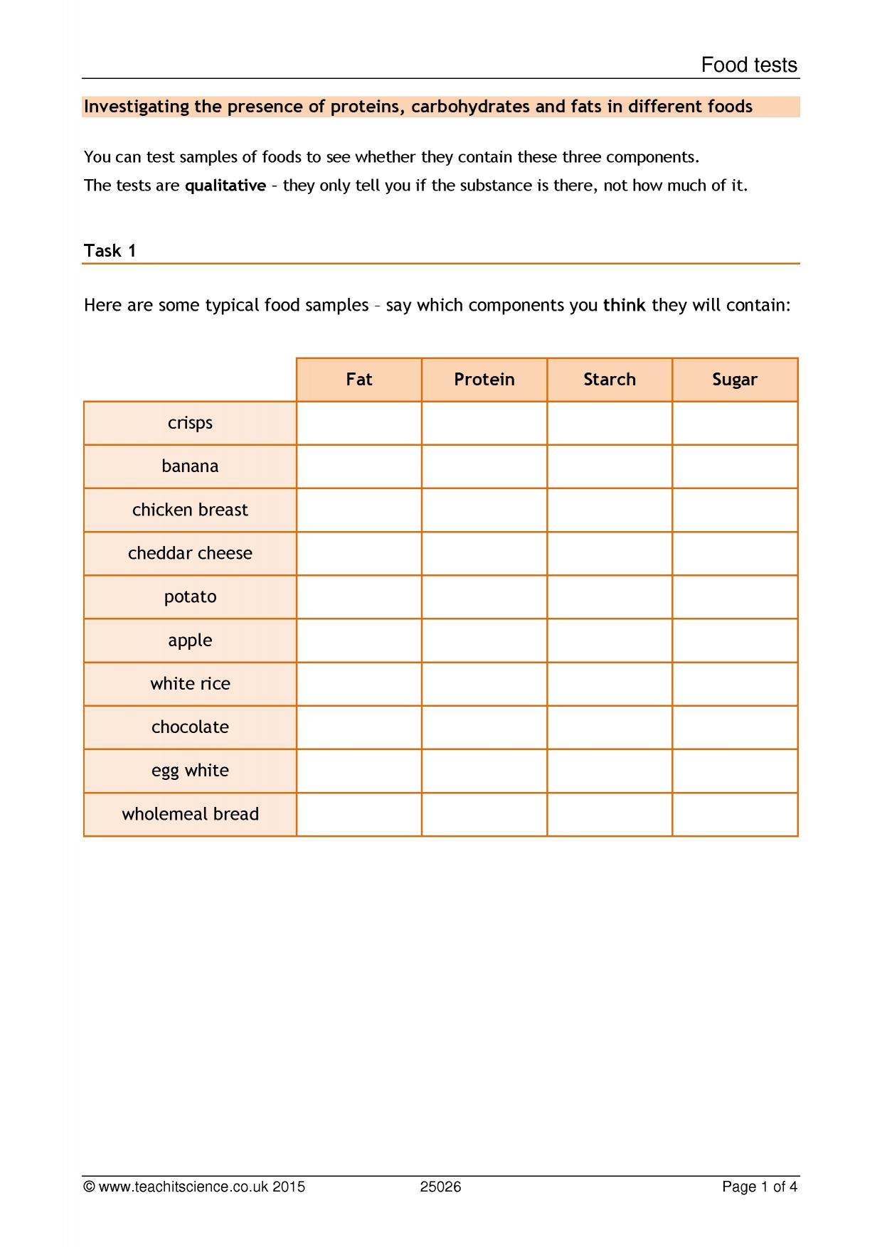 Understanding Chemical Equations Worksheet
