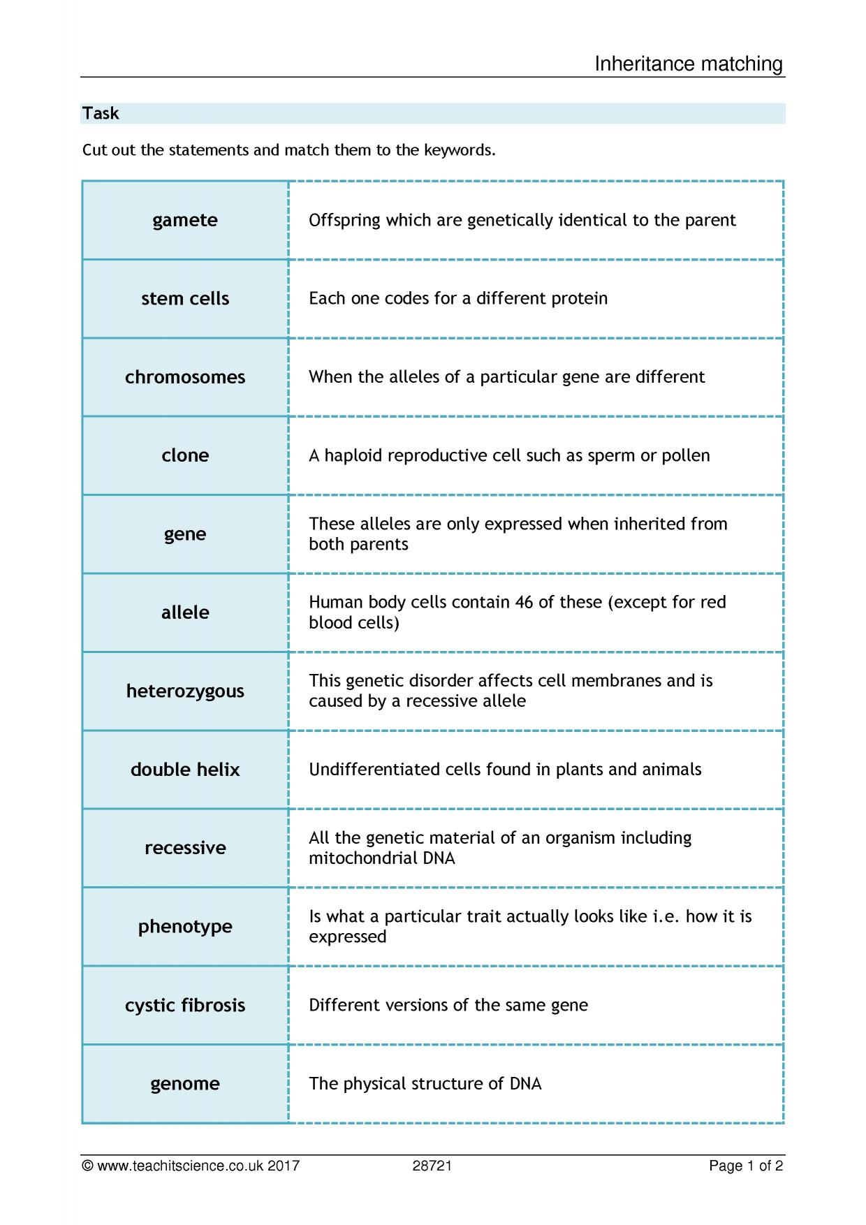 Cloning Plants Worksheet