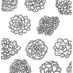 jumo_health_plants coloring sheet