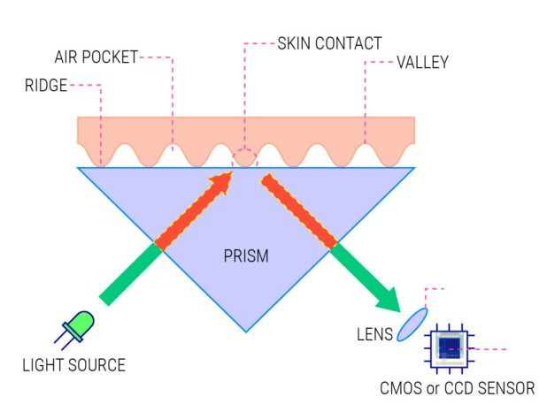 Fingerprint sensor working principle