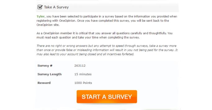oneopinion survey