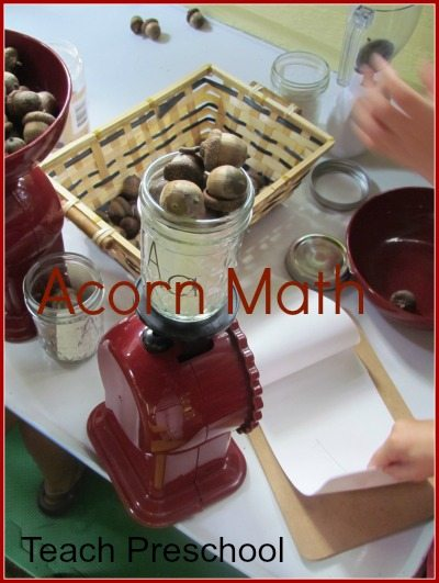 Weighing and exploring acorns in preschool