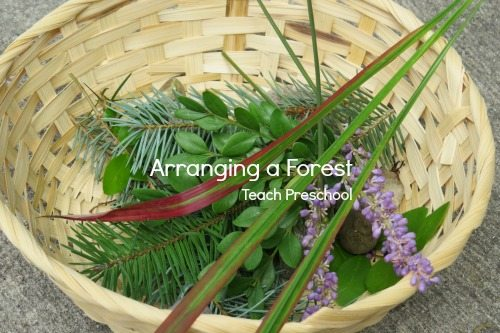 Discover and Explore: Arranging a forest