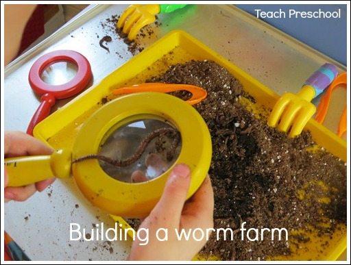 Building a worm farm