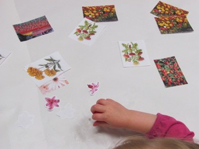 Creating a flower collage in preschool