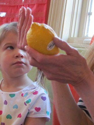 A little taste of science in the preschool classroom