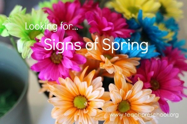 Looking for signs of spring