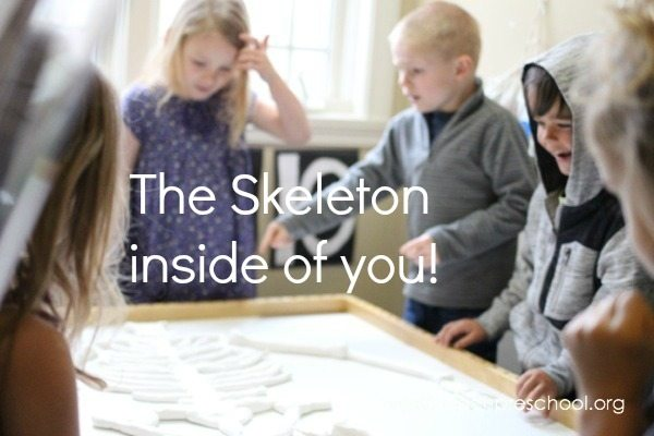 Learning about the skeleton inside of you!
