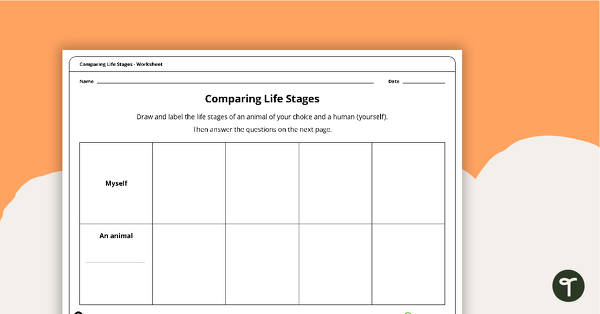 Comparing Life Stages Worksheet Teaching Resource