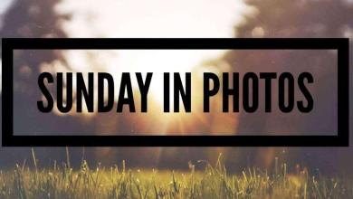 Photo of Sunday in Photos