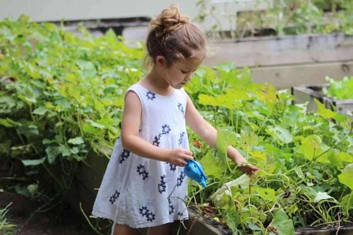 outdoor-activity-kid-gardening