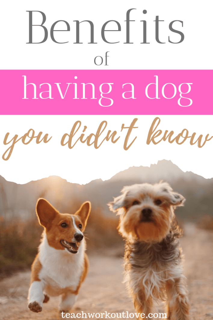 benefits-of-having-a-dog-you-didn't-know-teachworkoutlove.com-TWL-Working-Moms