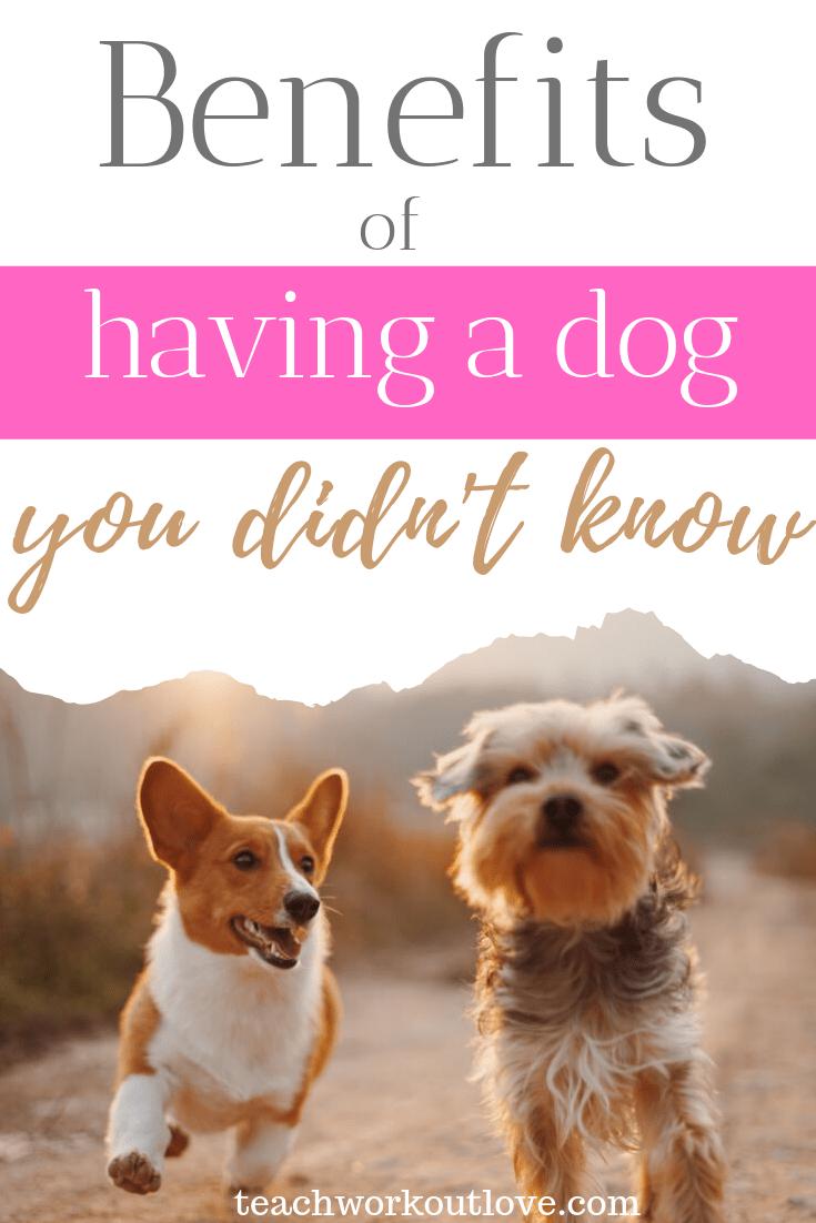 benefits-of-having-a-dog-you-didn't-know-teachworkoutlove.com-TWL-Working-Moms