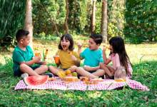Photo of 6 Easy Picnic Food Ideas for Kids to Inspire You