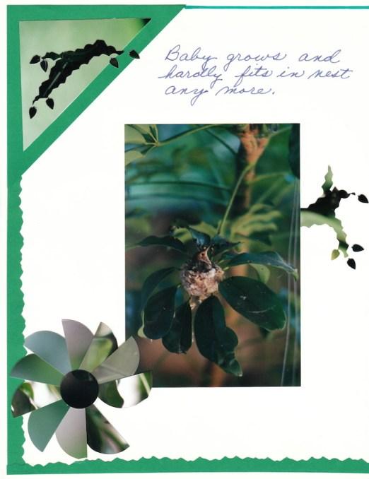 2000 Hummingbird_0010
