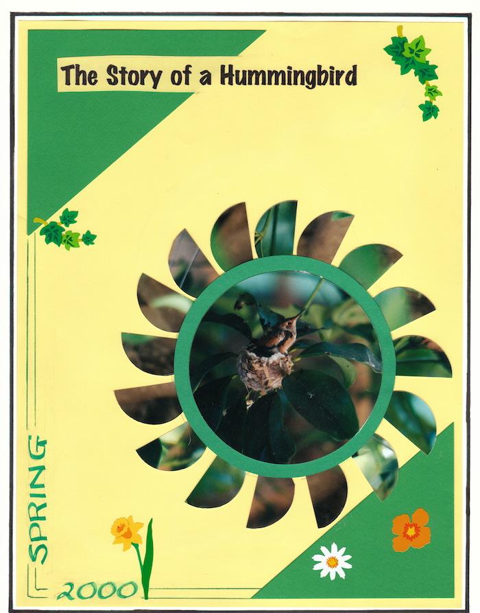 2000 Hummingbird_0013
