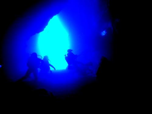 沖縄青の洞窟ダイビングの様子