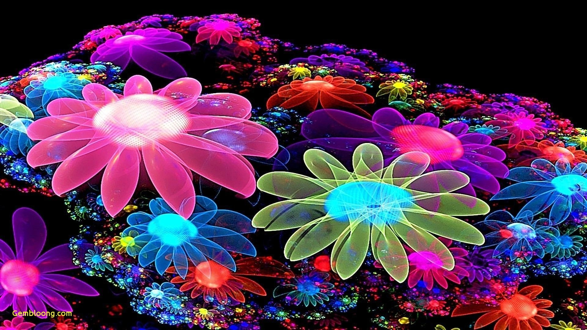 1920x1080 amazing colorful wallpapers