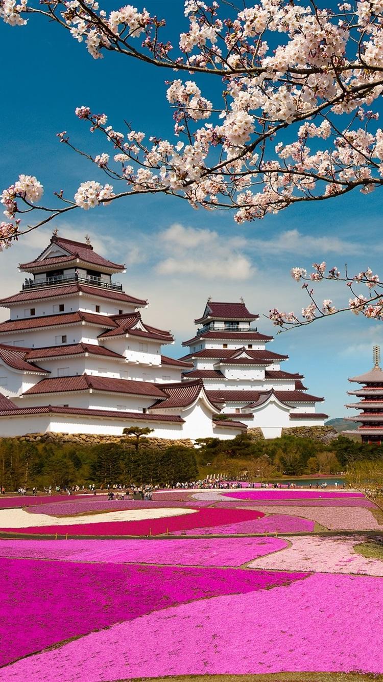 Iphone Wallpaper Fuji Mount Japan Temple Sakura Cherry Blossom Chromecast Background 750x1334 Wallpaper Teahub Io