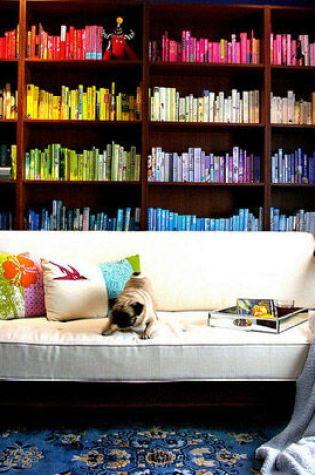 Bookshelf Organisation