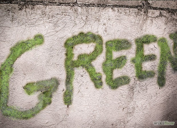 Moss Grafiti. Green after