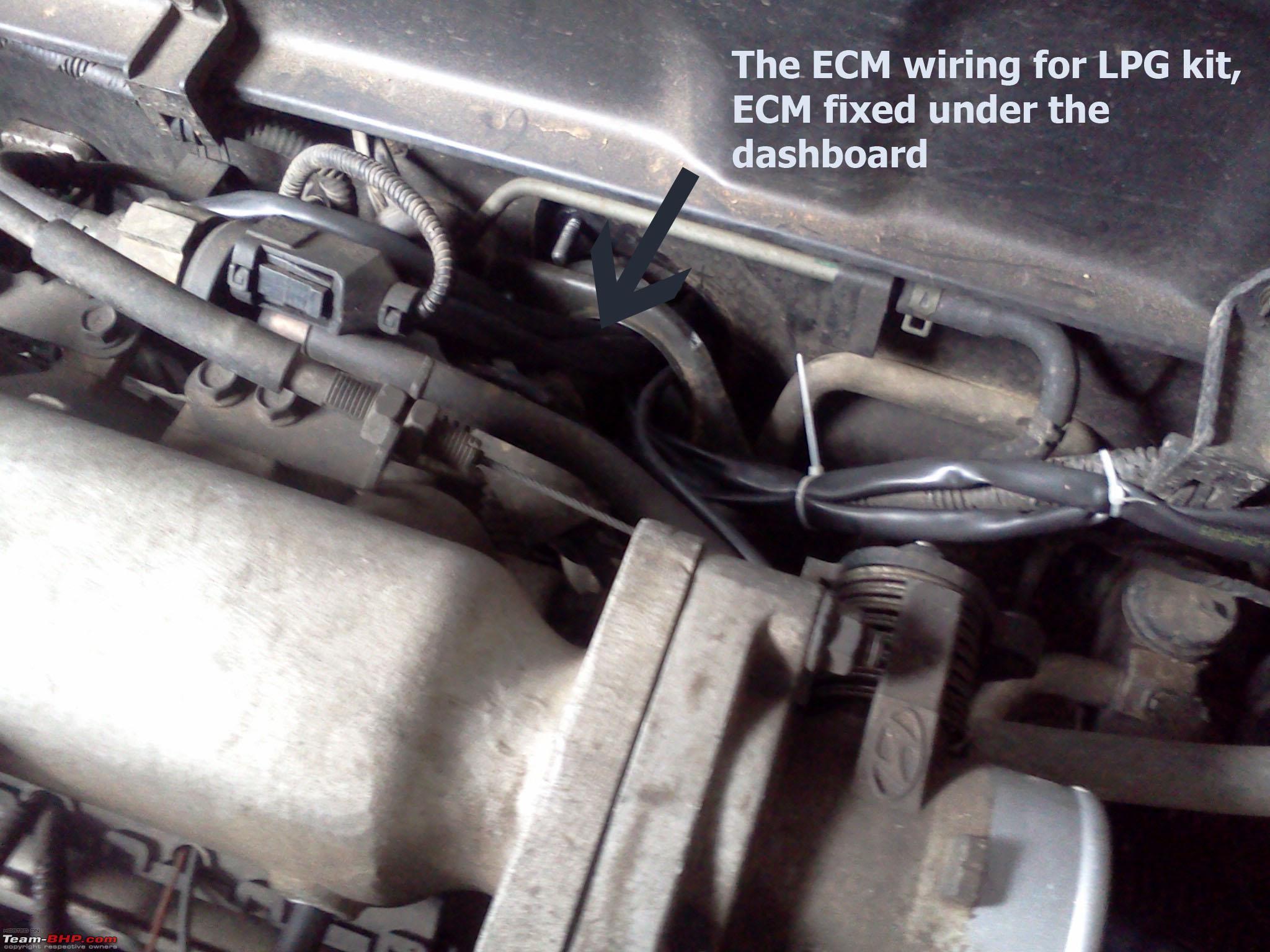 1987 Winnebago Wiring Diagram 88029 Free Download Harness Nissan Sentra Alternator Electrical Diagrams At