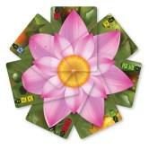 lotus-cards-1