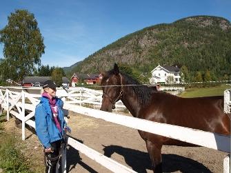 Nydelig sommervær om dagen, her er det 2-årige Super Point som koser seg i høstsola sammen oppasser Lise Marie.