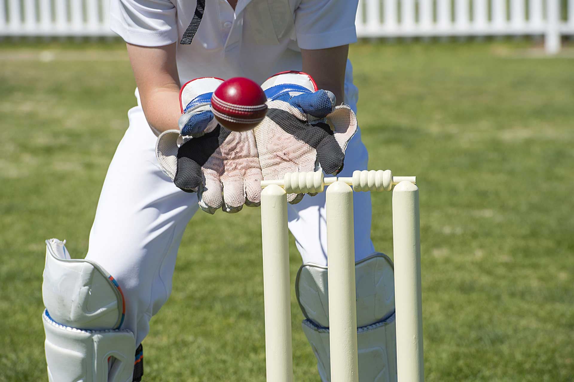 Cricket player catching the ball