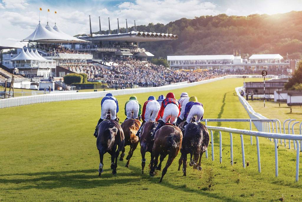 Horse Racing at Goodwood