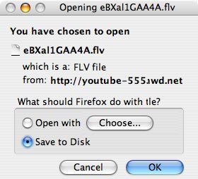 Save video files from YouTube