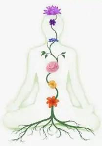 chakra health chart