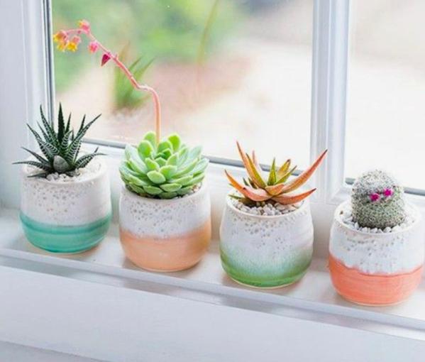 healthy home mini course