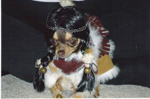 dog dressed as indian, cute puppies, worst family photos funny pictures random awkward family photos lol