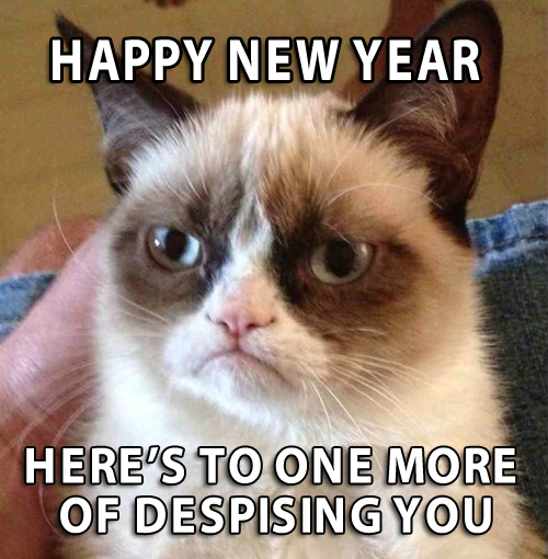 Grumpy Cat New Year Funny Pictures Strange awkward family photos stupid people bad tattoos funny sayings angry cat mean cat cute kittens