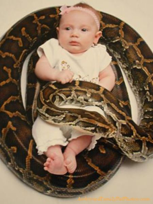 baby wrapped up in snake boa python Worst Parents Bad Parents Bad Parenting Moms Dads Awkward Family Photos Stupid Parents Crazy Bad Example Terrible Horrible Awful Weird