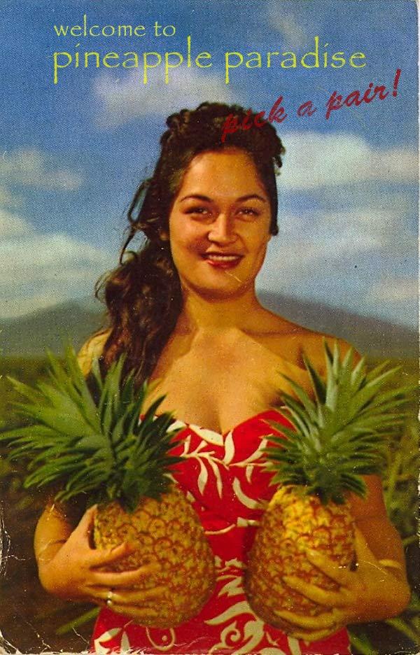 Vintage Pineapple Postcard ~ 16 Funny Pics & Memes