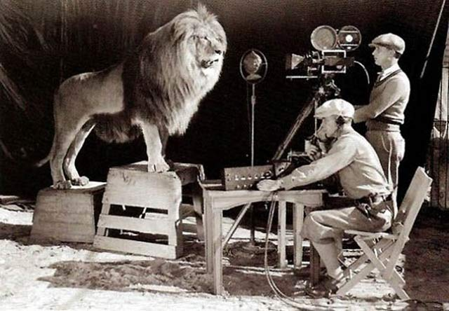 Filming the MGM Lion for Credits ~ 28 Historical Must See Photos