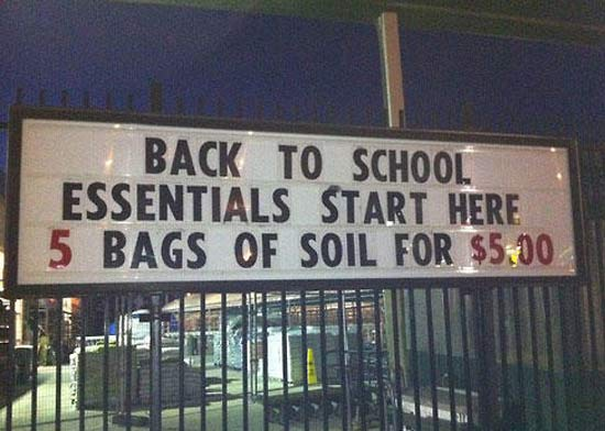 Back to School Essentials ~ 25 Funny Signs