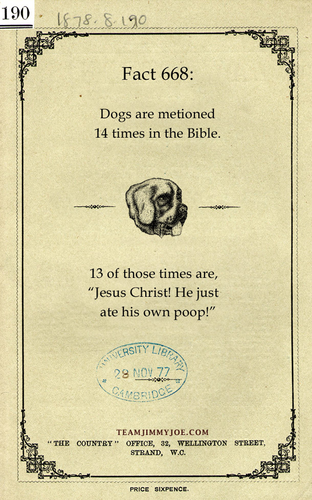 "Dog Facts: Gogs are mention 14 times in the bible. 13 of those times are ""Jesus Christ! He just ate his own poop!"
