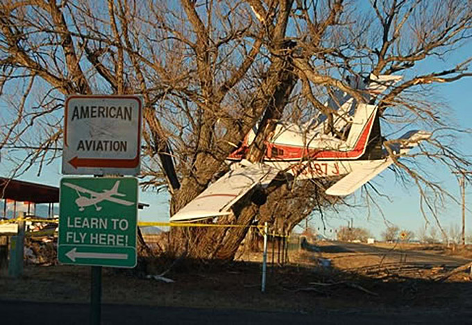 Plane in tree in front of learn to fly airport sign