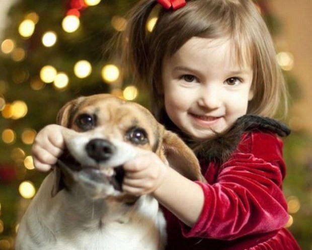Funny Awkward Christmas Photos ~ happy girl making dog smile
