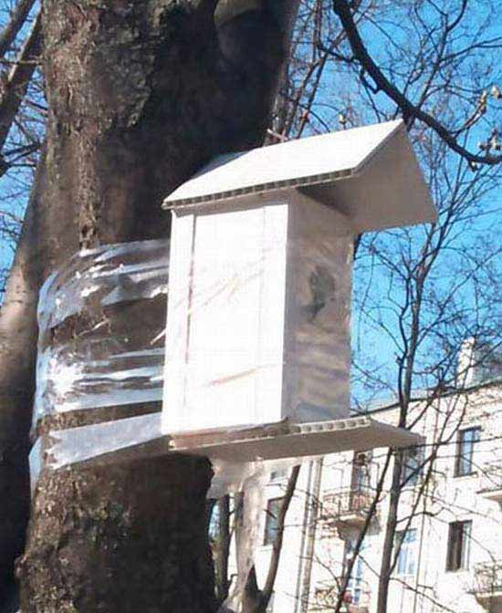 Funny pics~ redneck solutions: Birdhouse hung on tree with packing tape