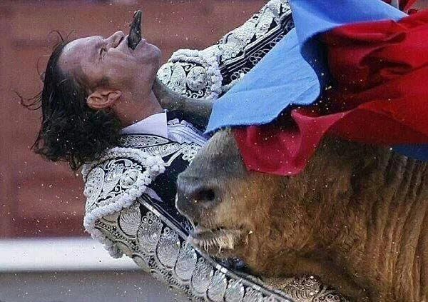 perfectly timed photos ~ bullfighter getting gored, sticking out tongue