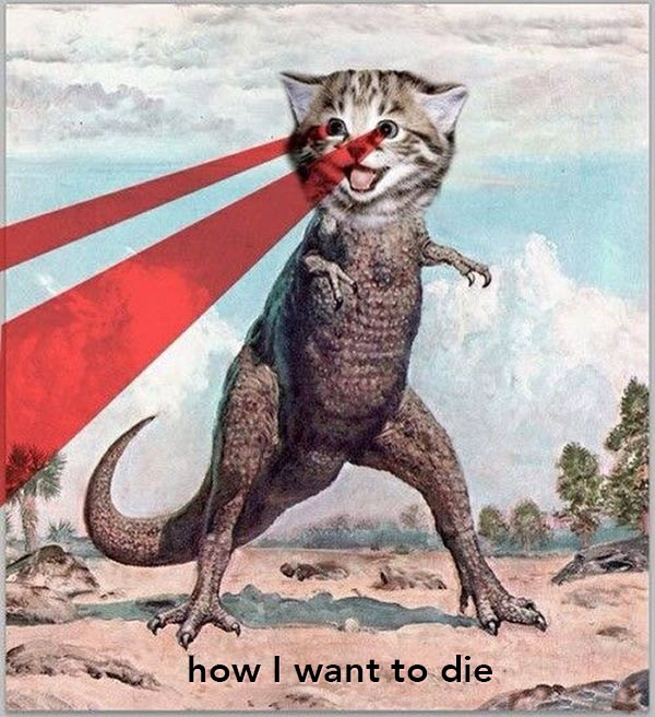 Funny Pics: T Rex Laser Kitty